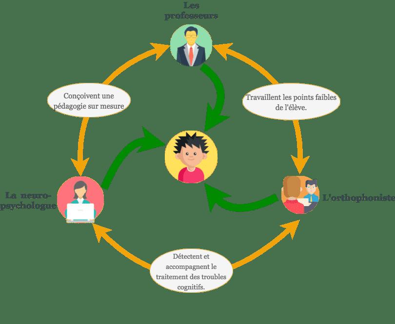 schéma complet de l'organisation du soutien scolaire